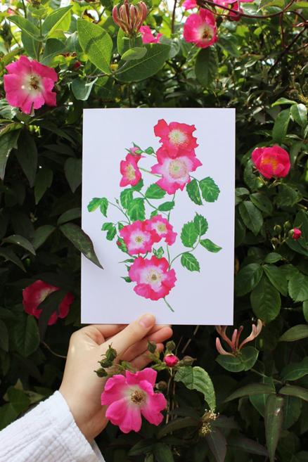 Briar Rose greeting card