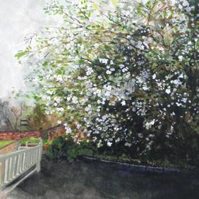 Japonica: original painting