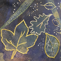 Close up detail of Leaf Print Cushion