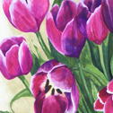 Close up detail of Magenta Tulips Giclee Print